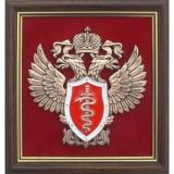 Эмблема Федеральной службы по контролю за оборотом наркотиков